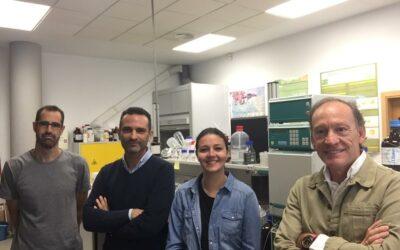 El grupo IMAES recibe a la investigadora A. Acevedo, de la universidad de BATH (UK), durante tres semanas en el mes de octubre, para completar su investigación sobre su tesis doctoral.